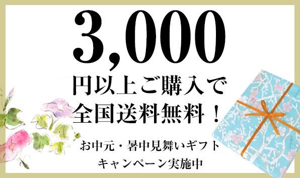 WP_campaign